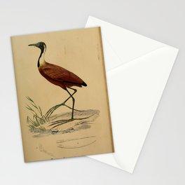 parra albinuca1 Stationery Cards