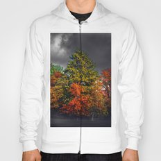 Magic trees Hoody