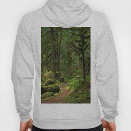 The Deep Woodland  Path... Hoody