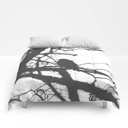 Bird Silhouette Black and White Photography Comforters