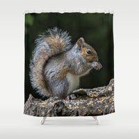 squirrel Shower Curtains featuring Squirrel by Fine Art by Rina