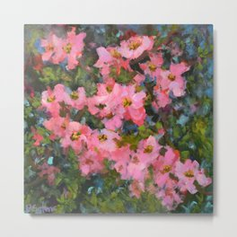 Spring Apple Blossoms Metal Print