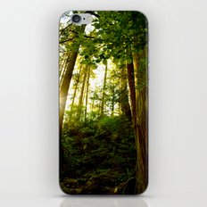 Something 'Bout The Sun Between The Trees iPhone Skin