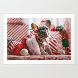 Sweet bulldog Art Print