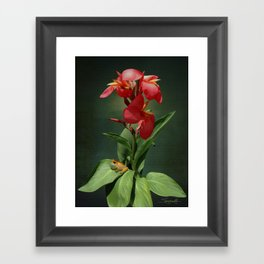 Canna Lily and Hourglass Tree Frog Framed Art Print