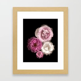 Purple, Pink, and White Roses Framed Art Print
