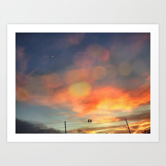 Love birds in the sunset Art Print