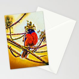 A Glorious Oriole Stationery Cards