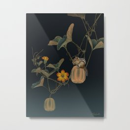 Gourd Vine and Chipmunk Metal Print