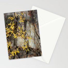 Focusing on Fall: 5 Stationery Cards