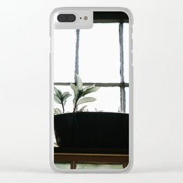 Plants in the Pantry Window Clear iPhone Case