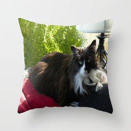 The Feline Queen Reposes (Gracie Queen of Chicago Collection) Throw Pillow