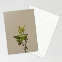 Nature Watch No. 4 Stationery Cards