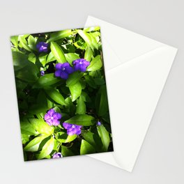Forget me not? Stationery Cards