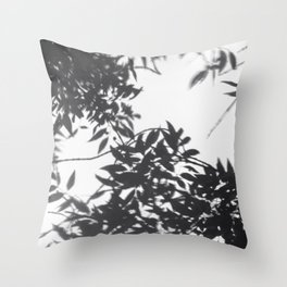 Reflejo Throw Pillow