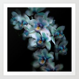 Teal Orchid Art Print