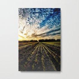 Crop Row Glory Metal Print