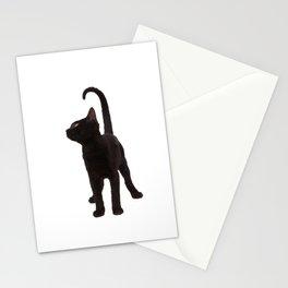 Gato negro Stationery Cards