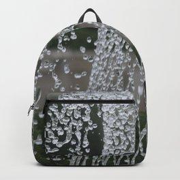 Longwood Gardens Autumn Series 416 Backpack
