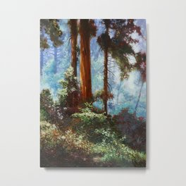 The Forrest Through the Trees Metal Print
