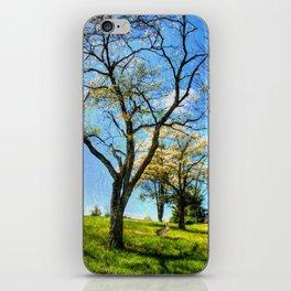 Under the Dogwoods iPhone Skin