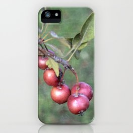 Crabapples into the wild iPhone Case