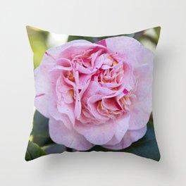 Strawberry Blonde Camellia Bloom Throw Pillow