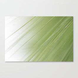 unobtrusive stripe pattern from nature, for a stylish decoration Canvas Print