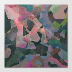 Camouflage XXIV Canvas Print