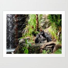 ANIMAL KINGDOM: Silverback Gorilla (In Thought) Art Print