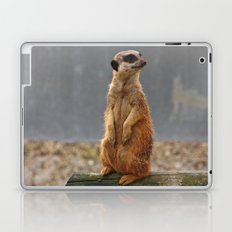 Meerkat No.1 Laptop & iPad Skin