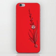 Gladiolus Flower iPhone & iPod Skin