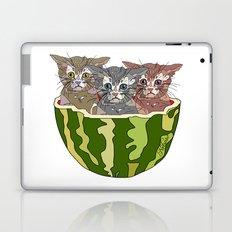 Watermelon Cats Laptop & iPad Skin