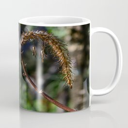 Dried flora Coffee Mug