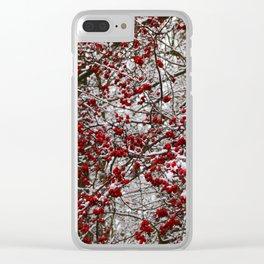 Hawthorn bush in winter Clear iPhone Case