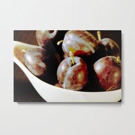 Franconian plums Metal Print