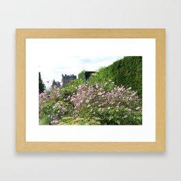 Château Rose Framed Art Print