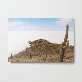 Cactus island Uyuni. Isla Incahuasi, Inkawasi or Inka Wasi Metal Print