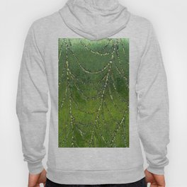 Spiders Web Hoody