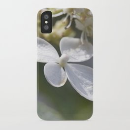 4 petal flower iPhone Case