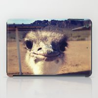 ostrich iPad Cases featuring OSTRICH by Kaitlin Bloom