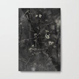 first blossoms - black'n white Metal Print
