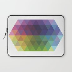 Fig. 016 Laptop Sleeve