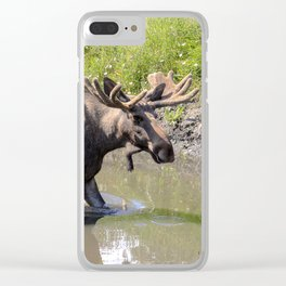 Moose standing in the water Clear iPhone Case