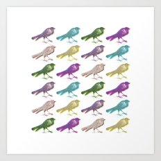 stereo birds Art Print