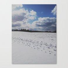 Terrywile Park. Canvas Print