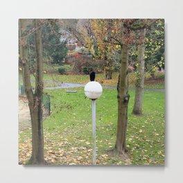 Le globe du corbeau. Metal Print