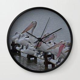 Pelicans of Meningie Wall Clock