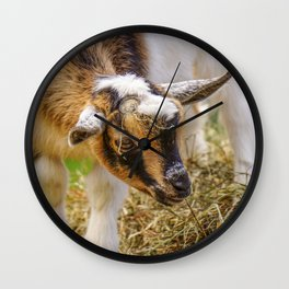 Baby Goat with Straw Hat Wall Clock