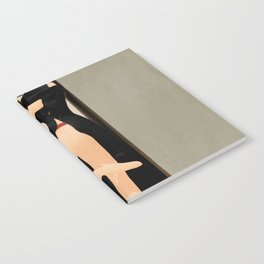 Elegant Model Flow Notebook